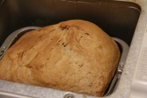 honey wheat bread 0009