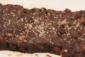 chocolate biscotti0010