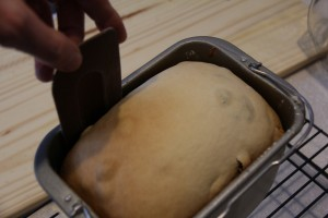 raisin bread 0013