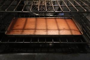 IMG_3845 Texas sheet cake