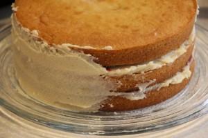 raspberry cake 0009